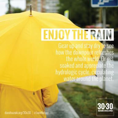 rain-32